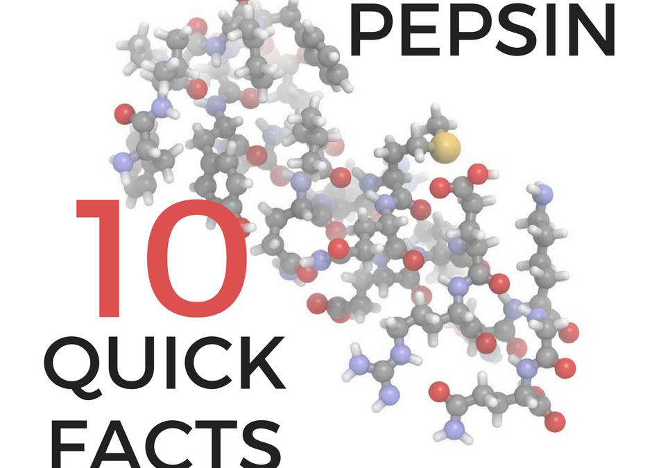 PEPSIN: 10 quick facts