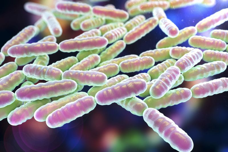 Probiotics and reflux disease