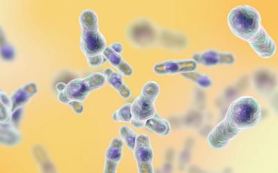 Does PPI usage increase risk of gut bug C. difficile?